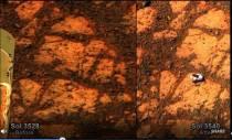 Jelly Donut on Mars