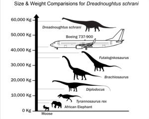 DinoScale