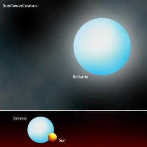 bellatrix star